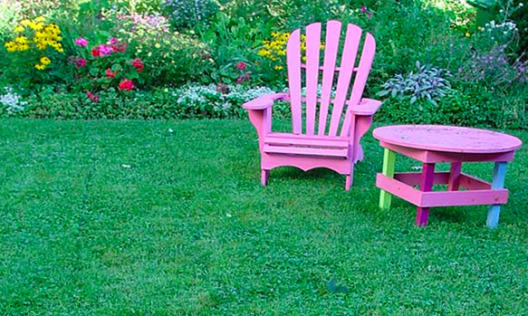 Healthy Lawn with chair